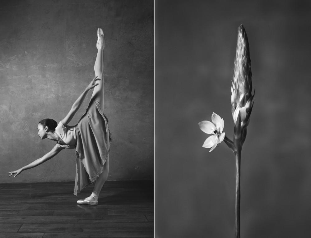 Картинки балерина и цветы, надписью для друзей
