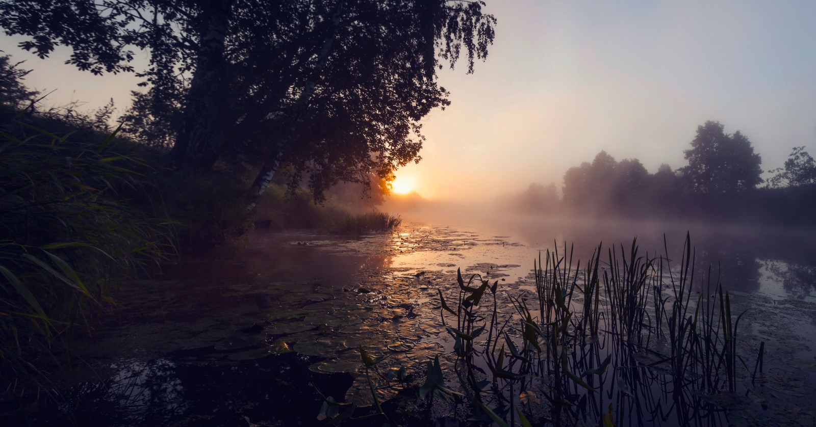 https://rosphoto.com/images/u/ugallery/1510/panoramabeznazvaniya1.jpg