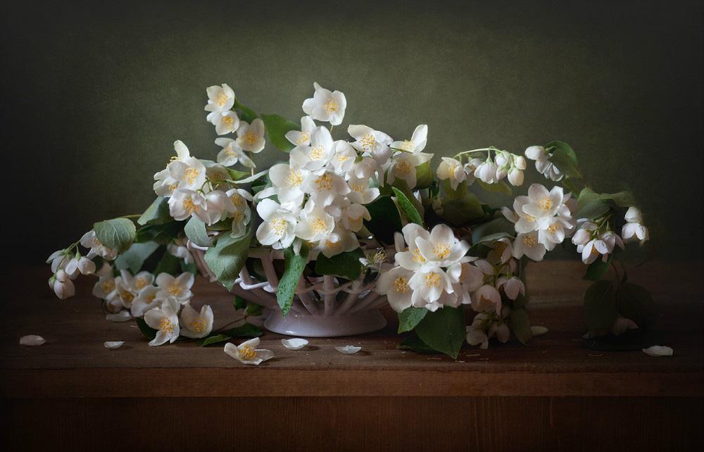 Заказ, букет из цветы жасмина