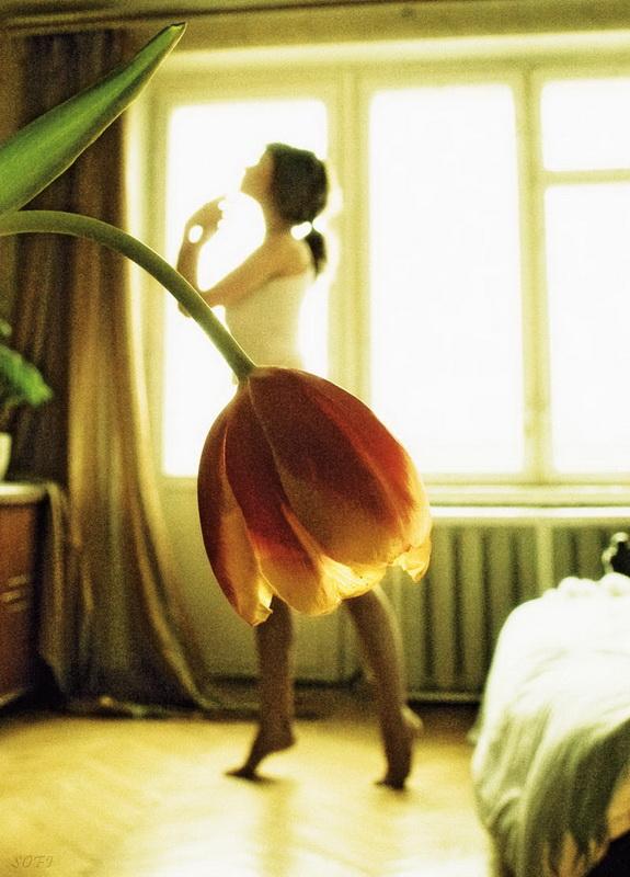 «Утреннее настроение» Фото: Татьяна Михина