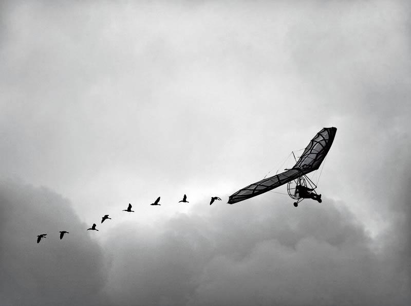 «Воздушный инструктаж» Фото: Марина Милинкович