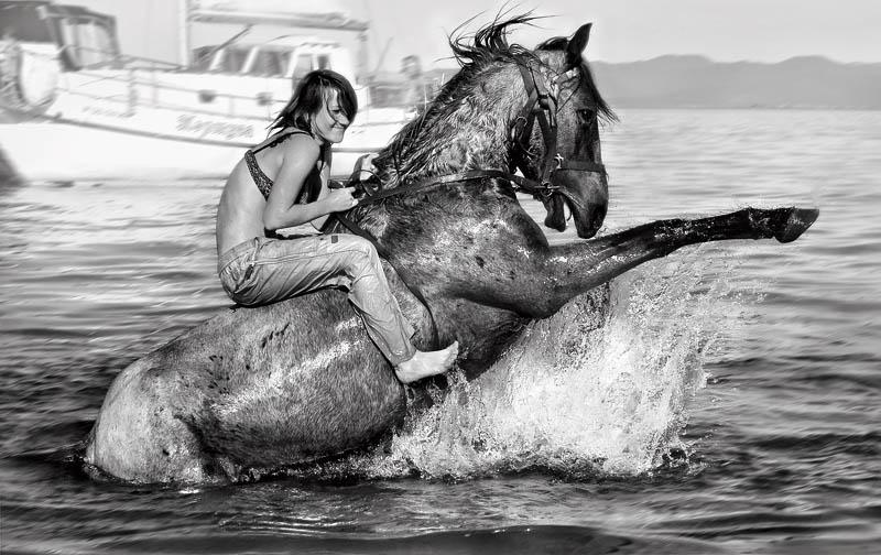 «Купание коня» Фото: Александр Шинкаренко