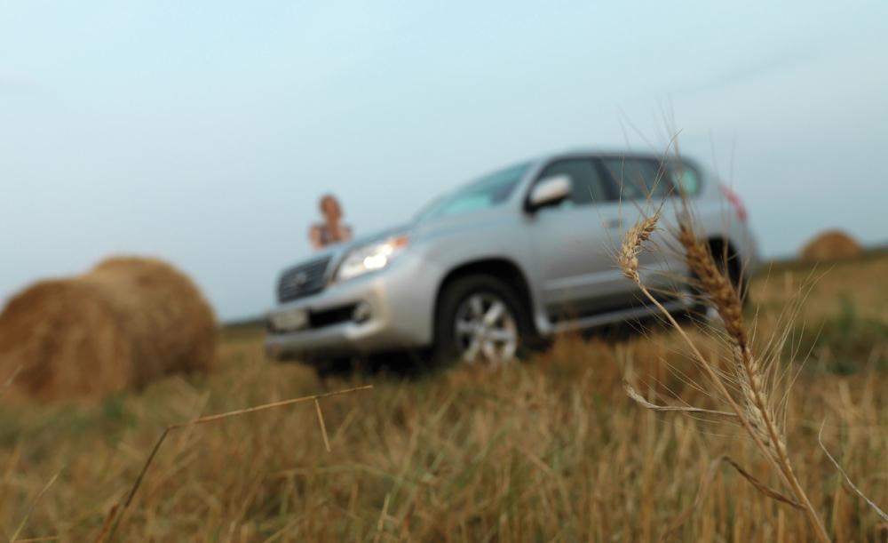 Руза: лес, вода, поле и Lexus GX460
