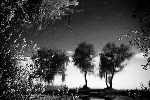 Кодрин Люпей, Румынский фотограф