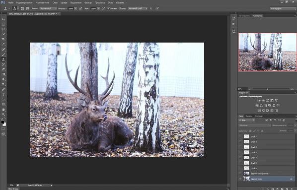 Создание тумана в photoshop, туман в фотошоп, эффекта тумана photoshop