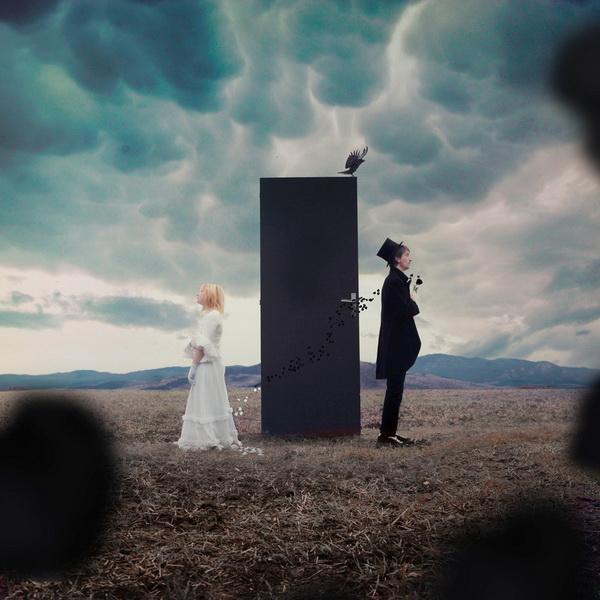 Винсент Бурильон, концептуальная фотография