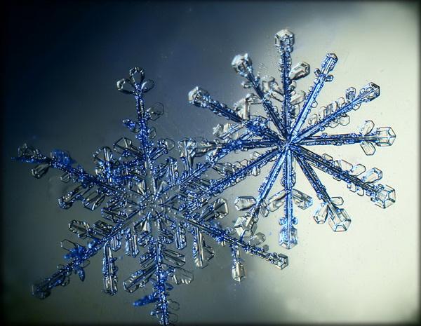 Сергей Кичигин, фотограф, фотографии снежинок, макро фотографии снежинок