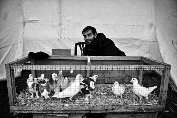 Серкант Хекимджи, фотографии, турецкий фотограф, фото Стамбула, выставка Серканта Хекимджи, Государственный музейно-выставочный центр Росфото,
