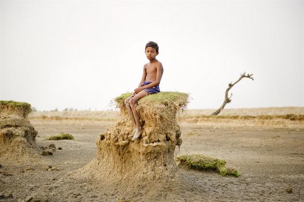 sony world photography awards 2013, фотоконкурс, Всемирная организация фотографии, World Photography Organization, конкурс фотографий