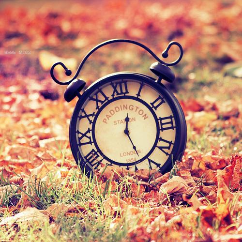 Часы осенью Фото Bebe Mozz