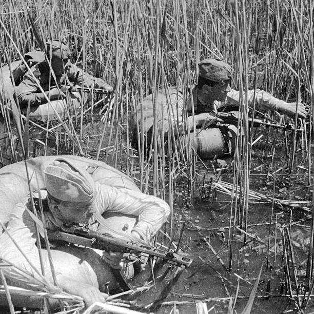 фотографии времен Великой Отечественной войны, Instagram проект Вперёд к Победе