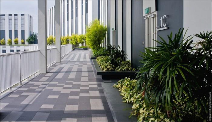 Дом. Сингапур. Фото: Виталий Раскалов