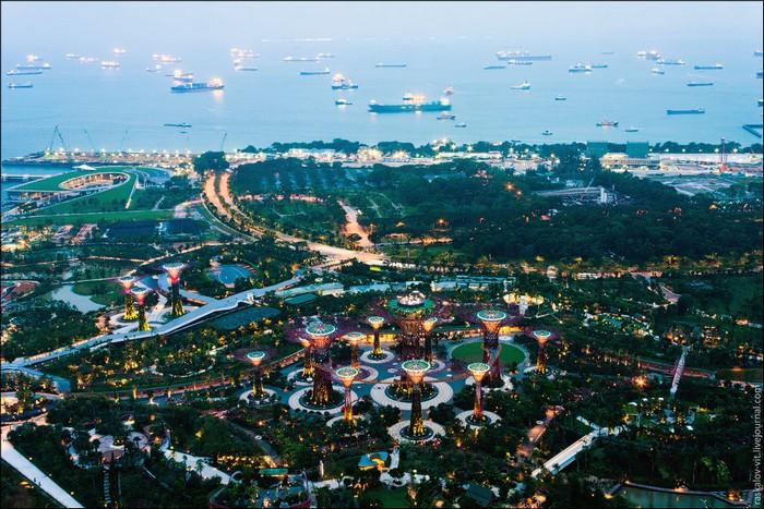 Виды на Сингапур сверху. Фото: Виталий Раскалов