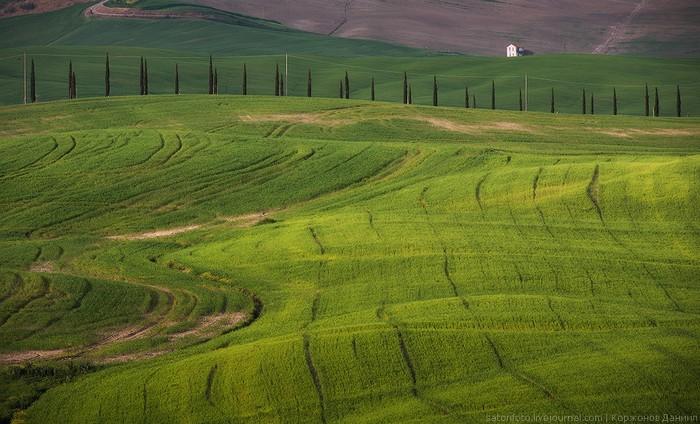Даниил Коржонов, фотограф Даниил Коржонов, фото Тосканы, пейзажная фотография