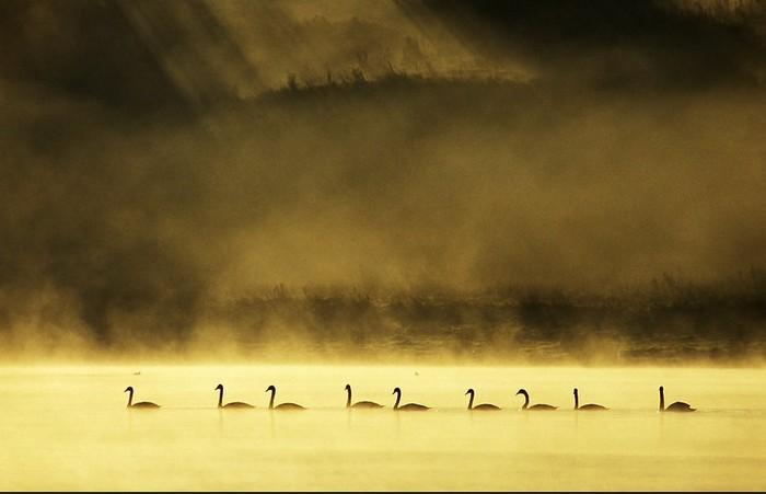 Пейзажная фотография, Йеспер Тённинг, фото природы