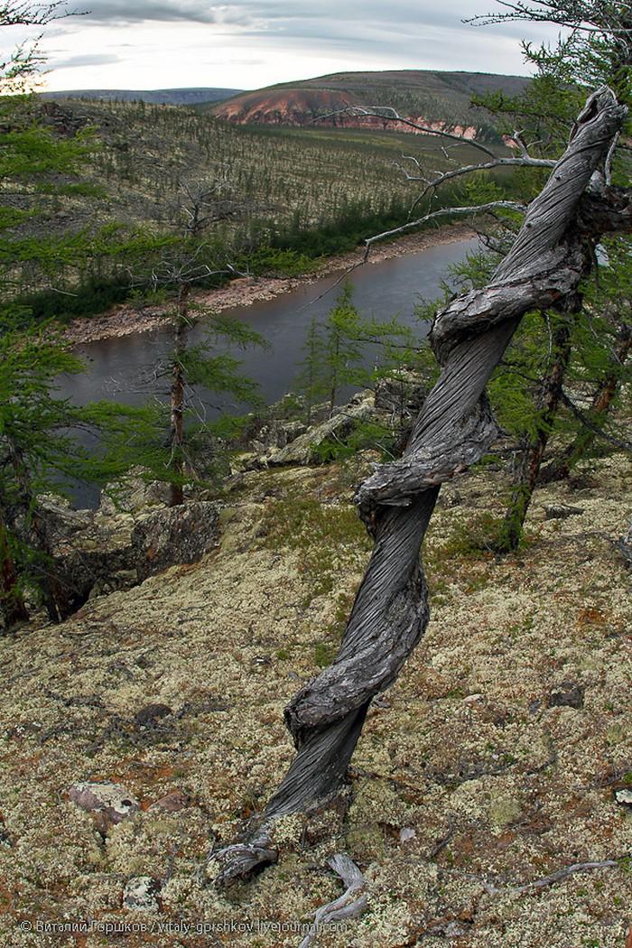 Виталий Горшков, плато Анабар, фото анабар, фотограф Виталий Горшков