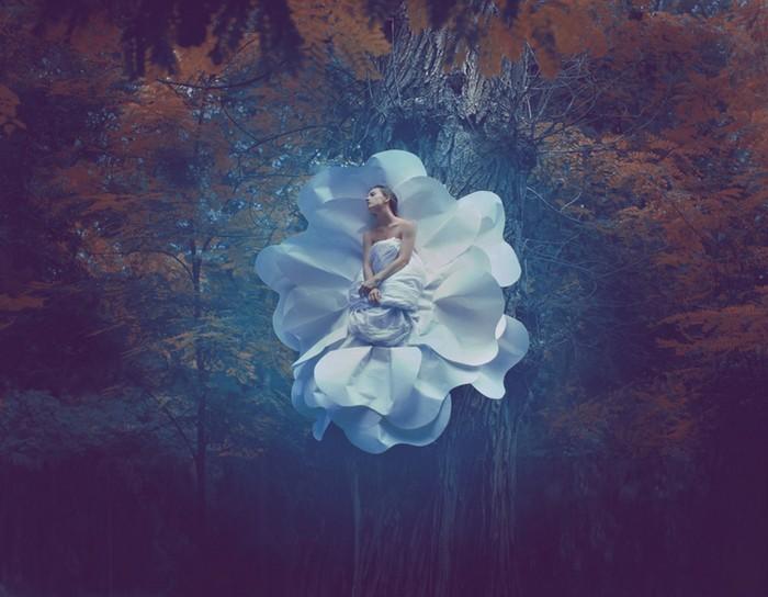 Волшебство в лесу. Фото: Катерина Плотникова