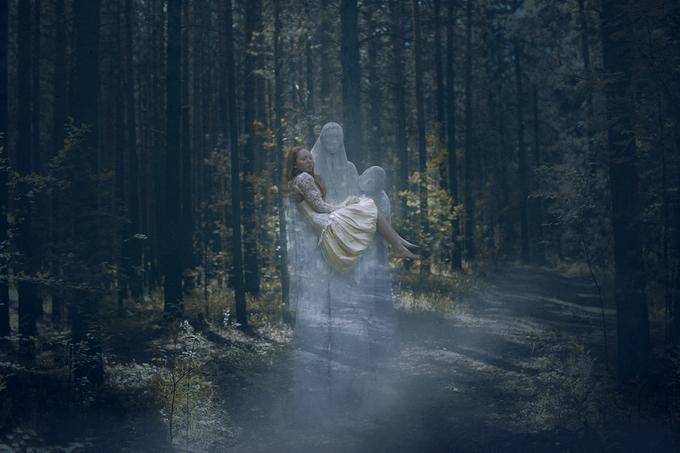 Мистический лес. Фото: Катерина Плотникова