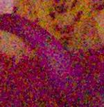 Olympus OM-D 12800