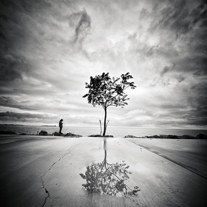 Мустафа Дедеоглу. Edge of Life