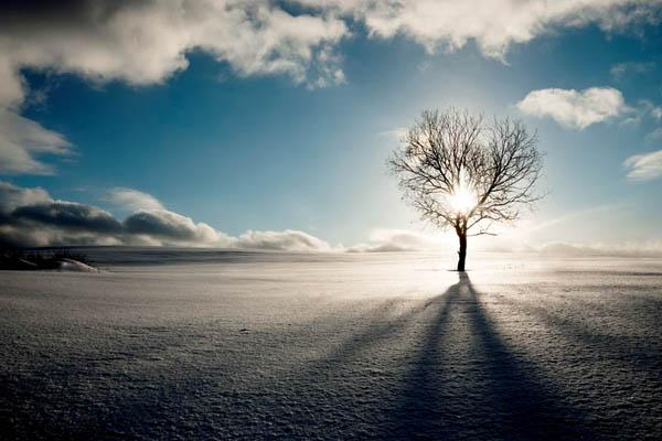 зимняя природа, рассвет в заснеженном поле