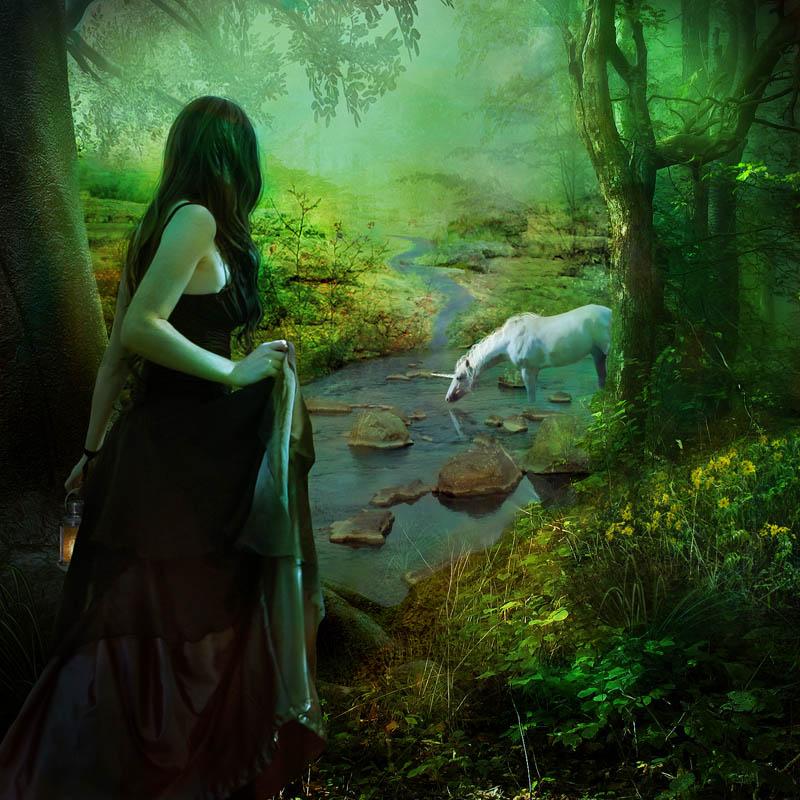 Волшебницы  и феи  цифрового мира