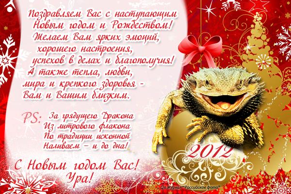 """С Новым годом и Рождеством! От фотожурнала """"Росфото"""""""