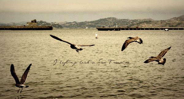 Евгения Касьянова: Just a bird