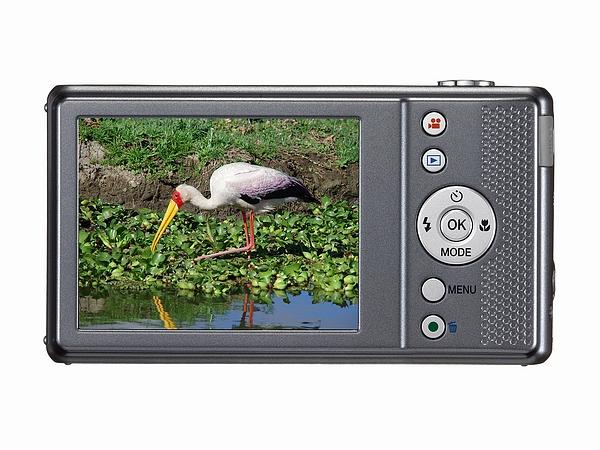 Camera Pentax VS20