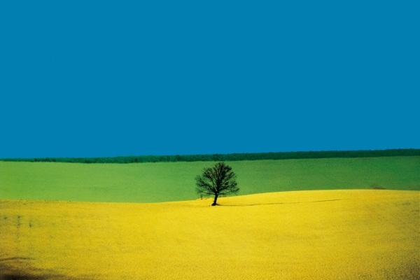 РОСФОТО представляет выставку Франко Фонтана – одного из наиболее известных современных итальянских мастеров художественной фотографии.